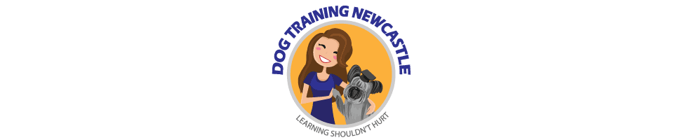 Dog Training Newcastle-Home